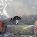 Pothole in back alley