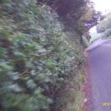 4/10/2015 Still not touched and dangerous. These bushes have only been trimmed by the passing HGVs.