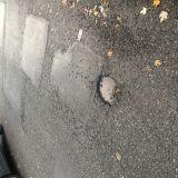 Pothole 2 nr #10
